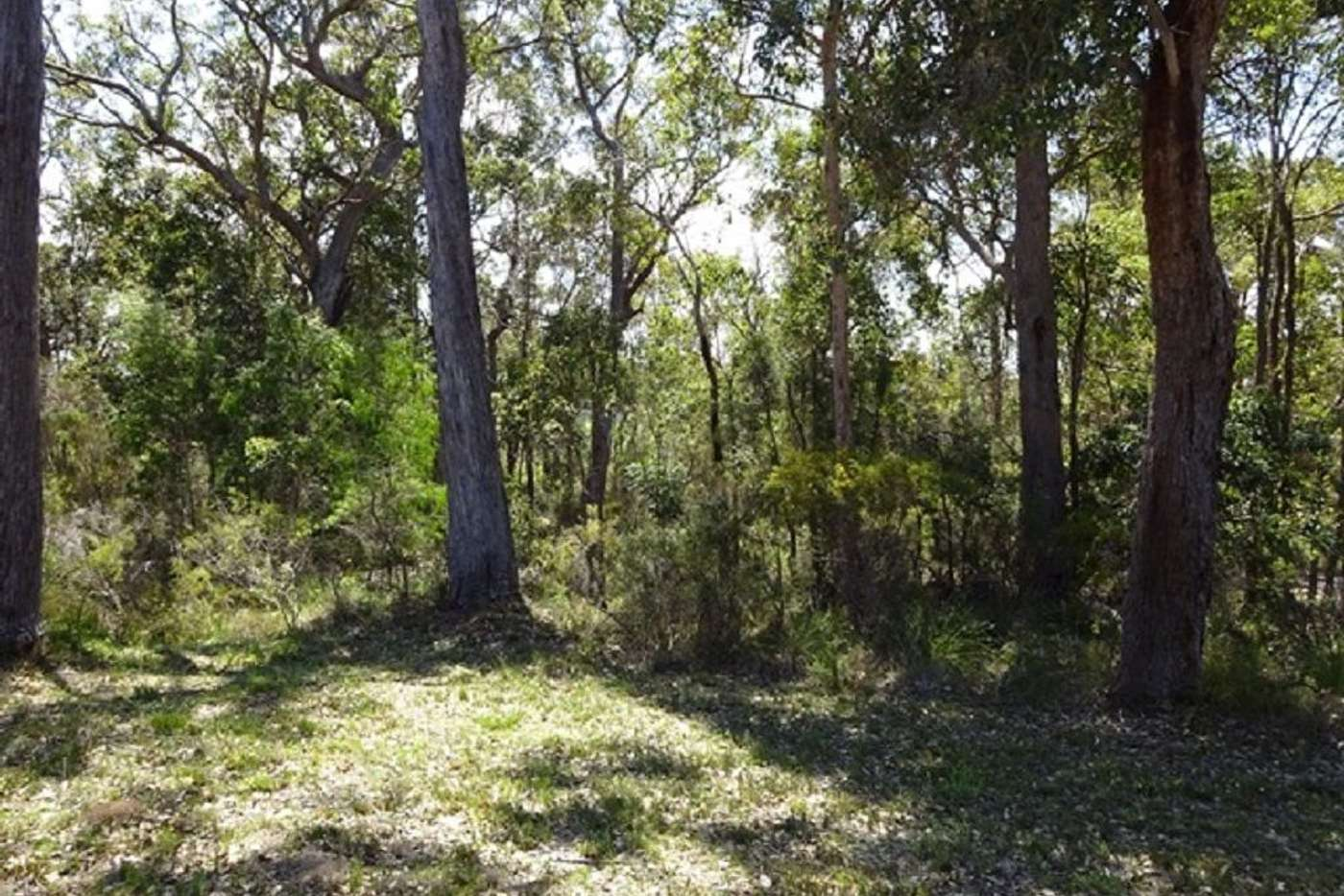 Seventh view of Homely house listing, 10 Coughlan Grove, Denmark WA 6333