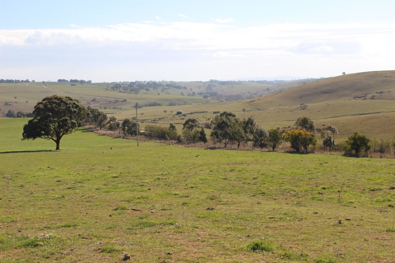 Lot 205 Browns Creek Road
