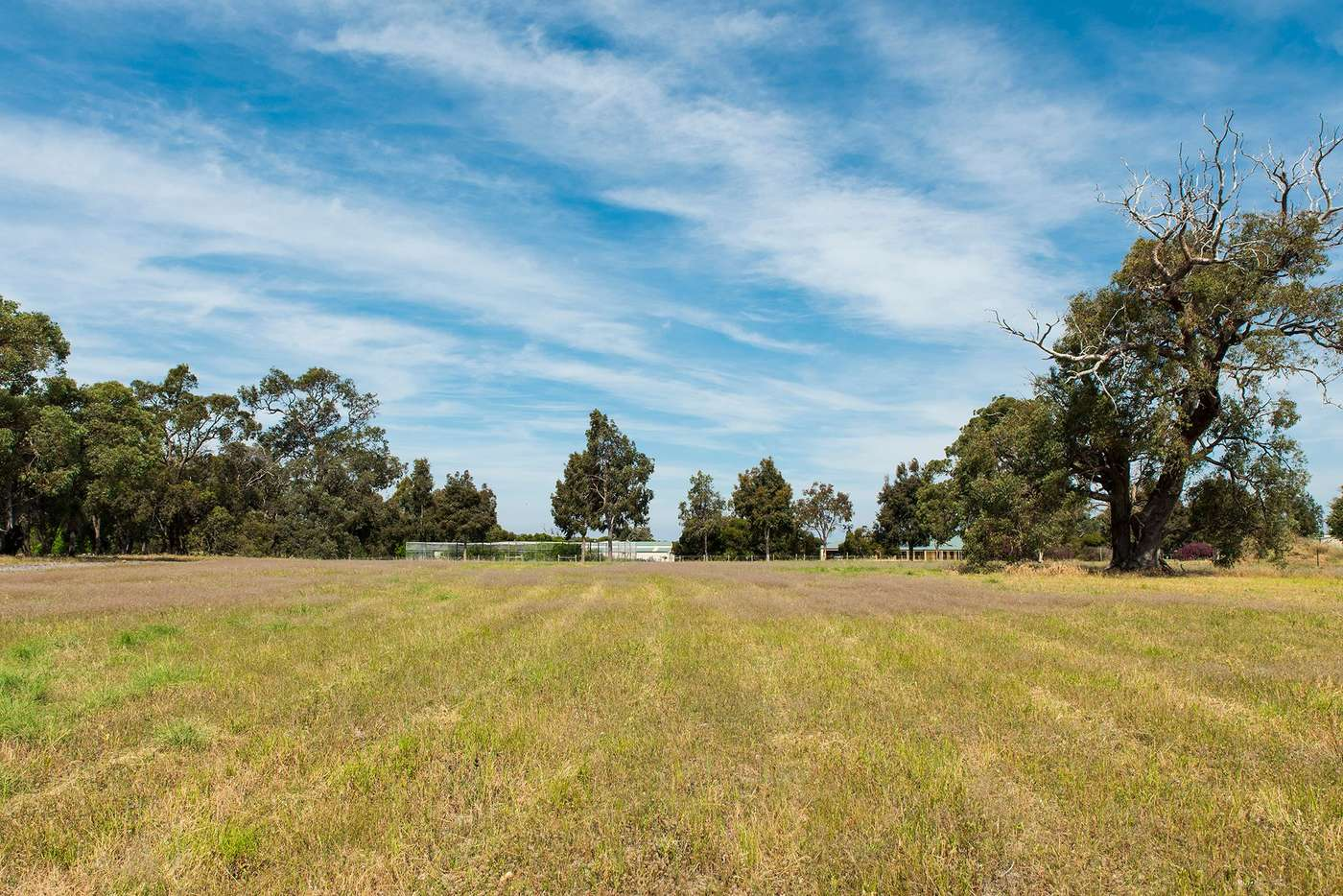 Main view of Homely residentialLand listing, 141 Ayrshire Loop, Lower Chittering WA 6084