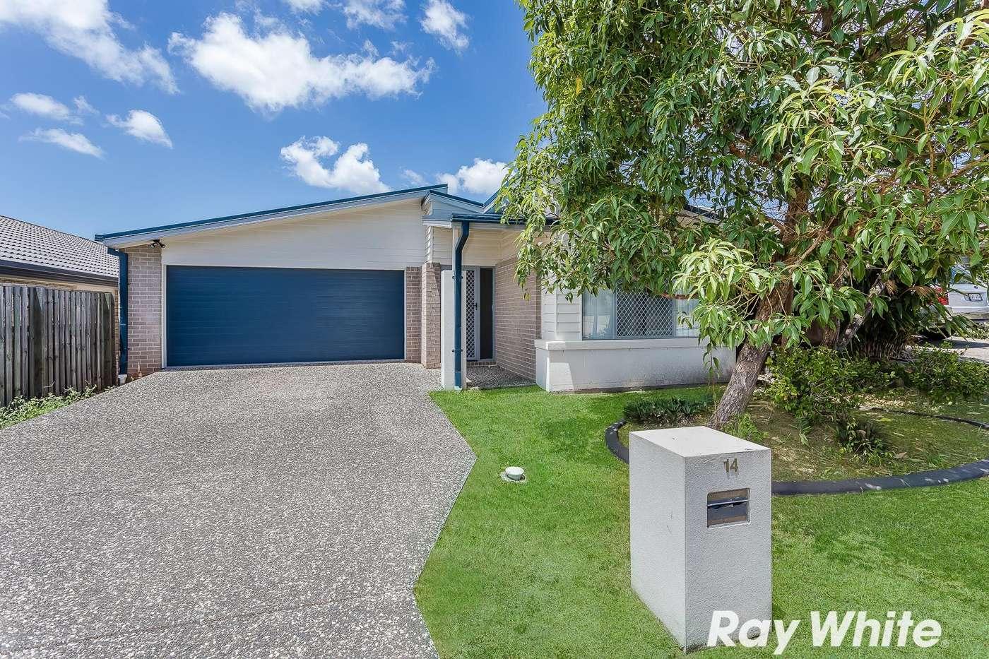 Main view of Homely house listing, 14 Kingfisher Street, Dakabin, QLD 4503