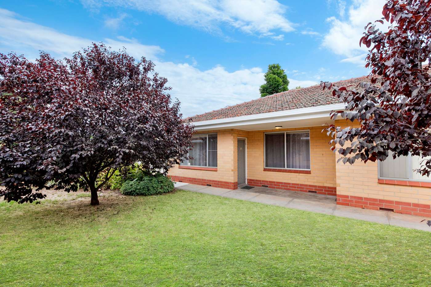 Main view of Homely unit listing, 9/155 First Avenue, Royston Park SA 5070