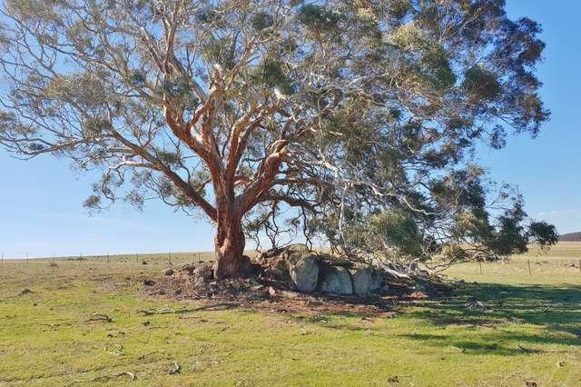 192b Boro Road, Tarago NSW 2580