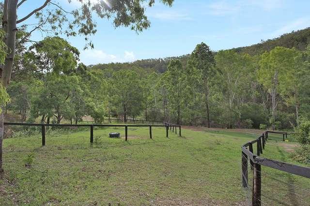 Lot 21 Banks Creek Road, Banks Creek QLD 4306