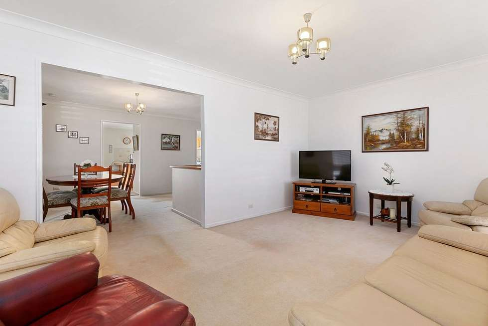 Third view of Homely house listing, 19 Tamaree Avenue, Wynnum QLD 4178
