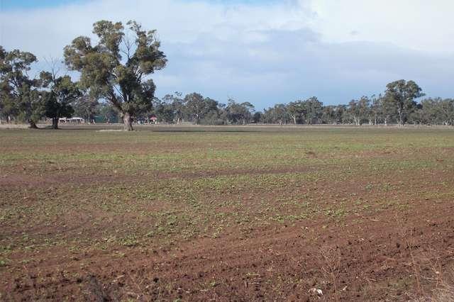 Section 64 Pigeon Flat Road, Mundulla SA 5270