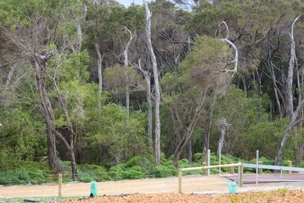 Third view of Homely residentialLand listing, 10 Tassel Place, Denmark WA 6333