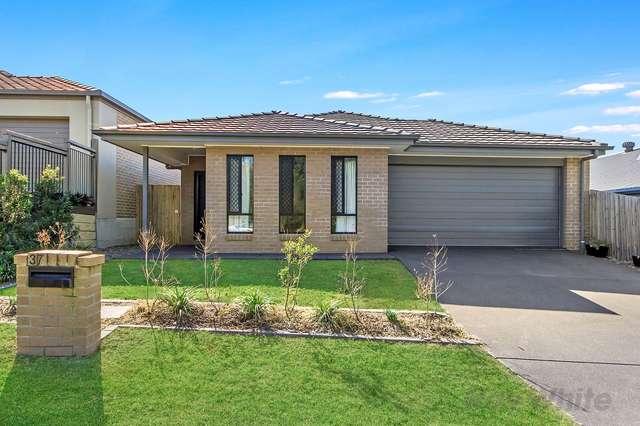 37 Wollombi Avenue, Ormeau Hills QLD 4208
