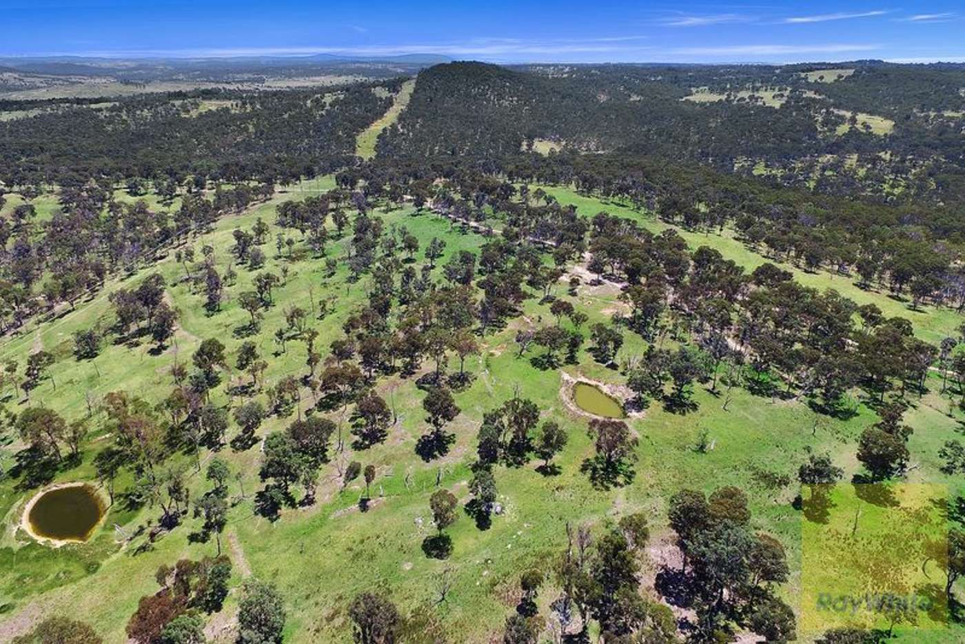 Fifth view of Homely mixedFarming listing, 89 Devoncourt Road, Uralla NSW 2358