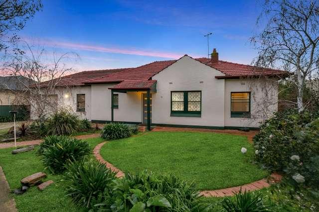 33 Kimber Terrace, Kurralta Park SA 5037