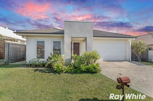 37 Sage Parade, Griffin QLD 4503