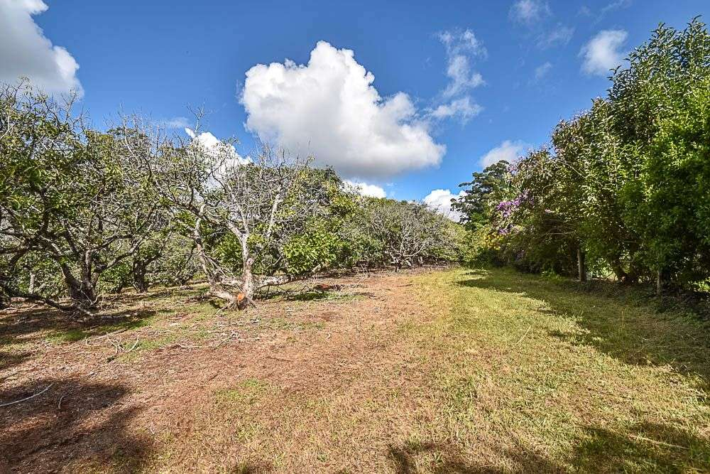 Main view of Homely  listing, 153 Alpine Terrace, Tamborine Mountain, QLD 4272