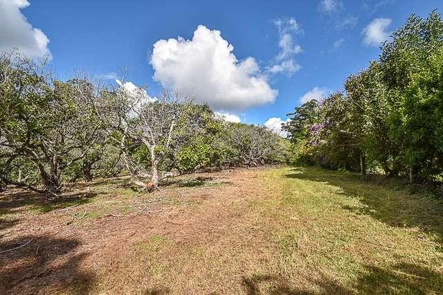 153 Alpine Terrace, Tamborine Mountain QLD 4272
