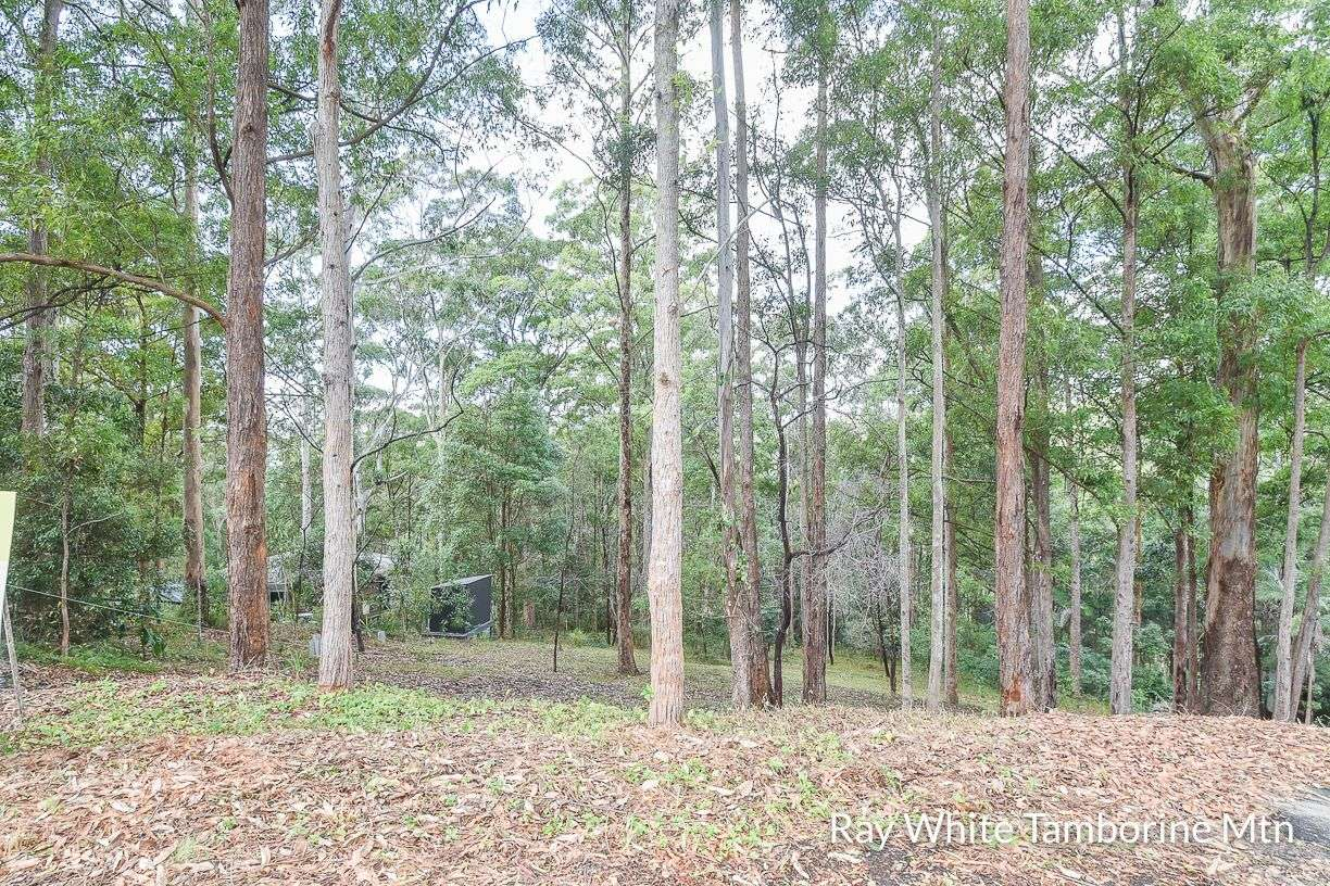 Main view of Homely  listing, 5 Orchis Drive, Tamborine Mountain, QLD 4272
