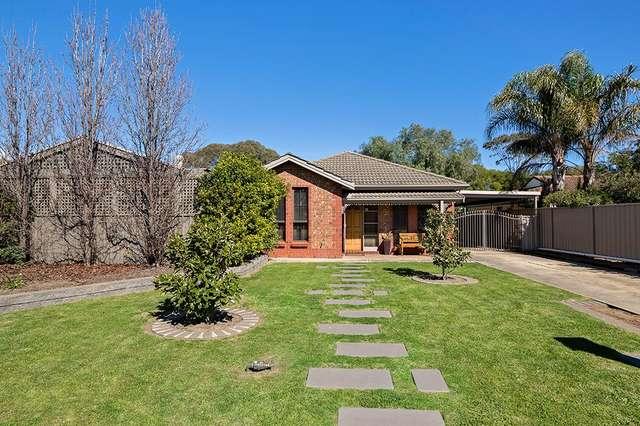 20 Links Road, Novar Gardens SA 5040
