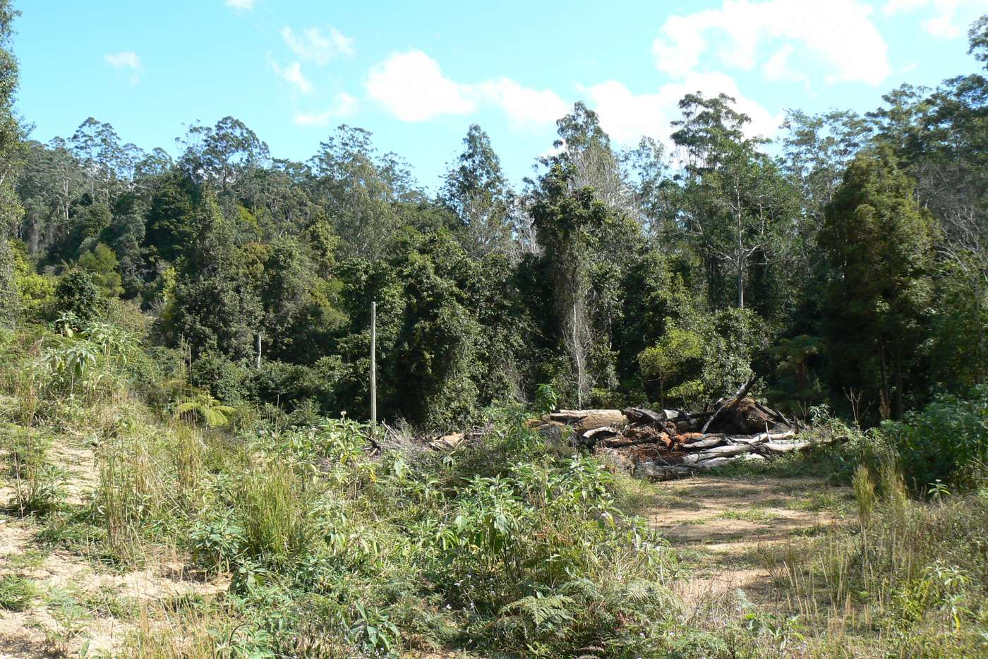 Sixth view of Homely ruralOther listing, 1243 Kalang Road, Bellingen NSW 2454