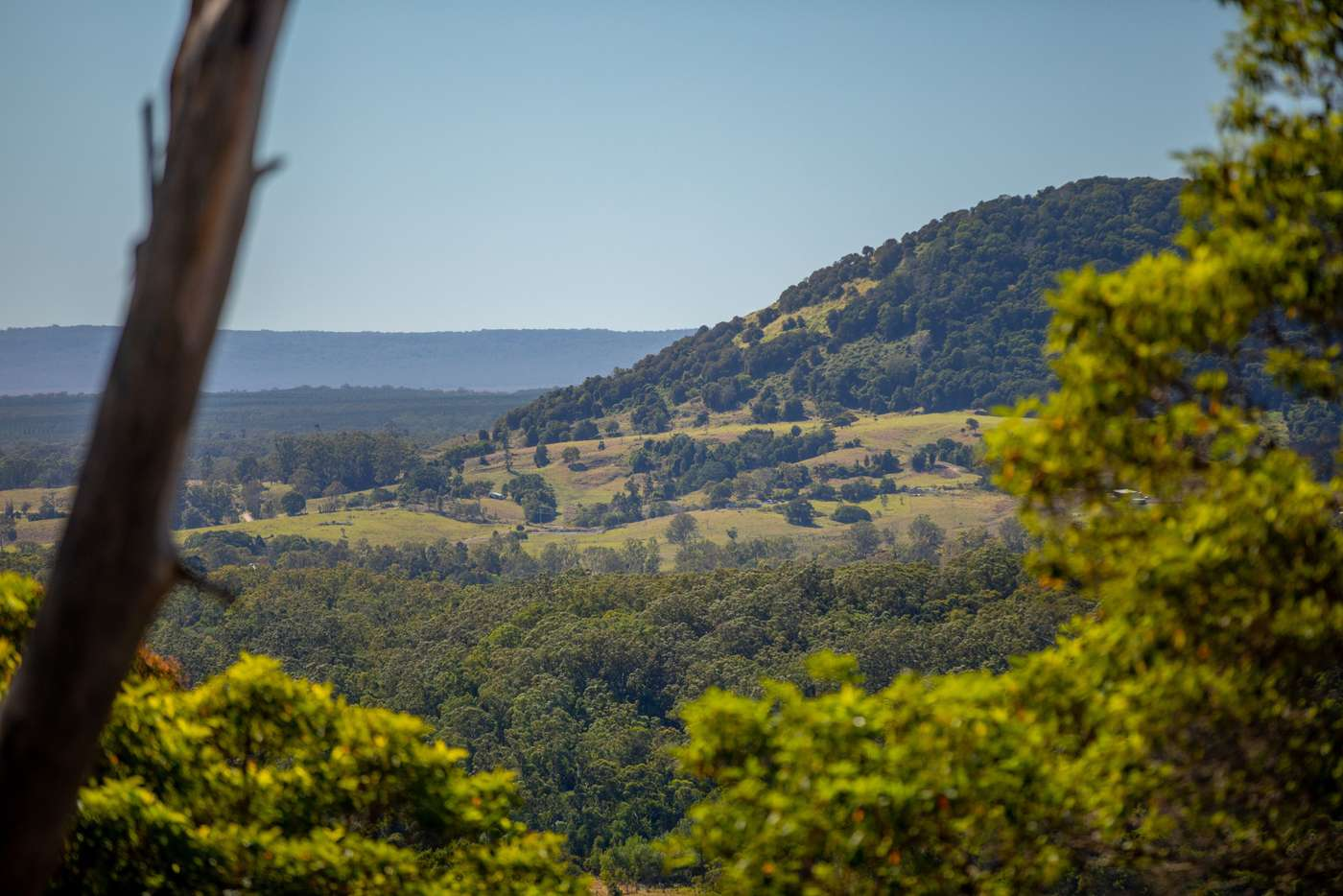 Seventh view of Homely acreageSemiRural listing, 396 Stewart Road, Coondoo QLD 4570