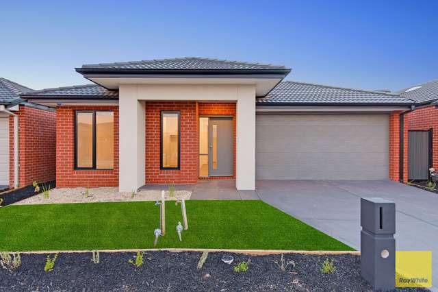 16 Featherwood Crescent, Craigieburn VIC 3064