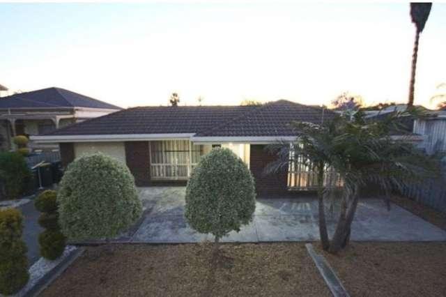 77 Florence Terrace, Rosewater SA 5013