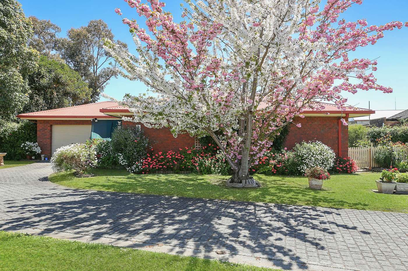 Main view of Homely unit listing, 2/11 Longmore Street, Camperdown, VIC 3260