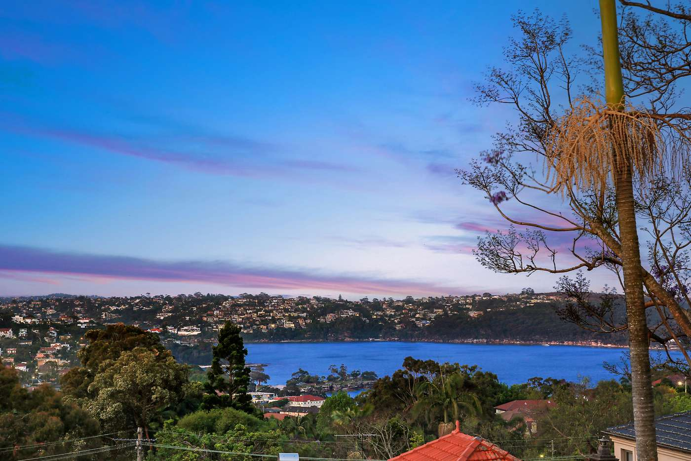 Main view of Homely house listing, 99 Middle Head Road, Mosman NSW 2088