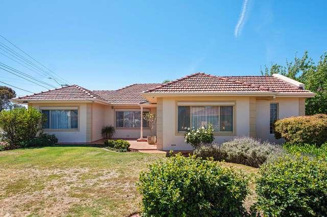 1 Hartog Street, Flinders Park SA 5025