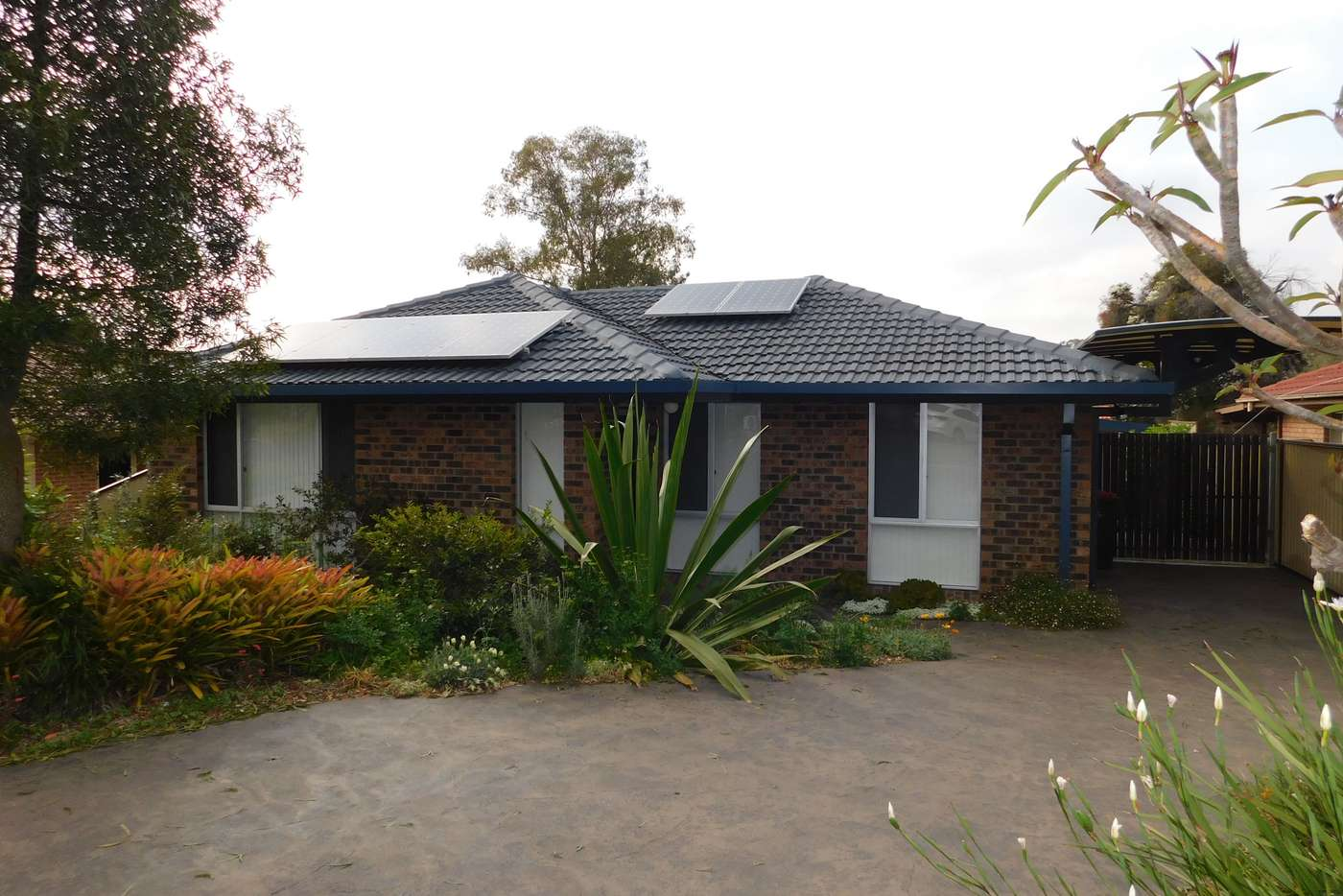 Main view of Homely house listing, 50 Tuncurry Street, Bossley Park NSW 2176