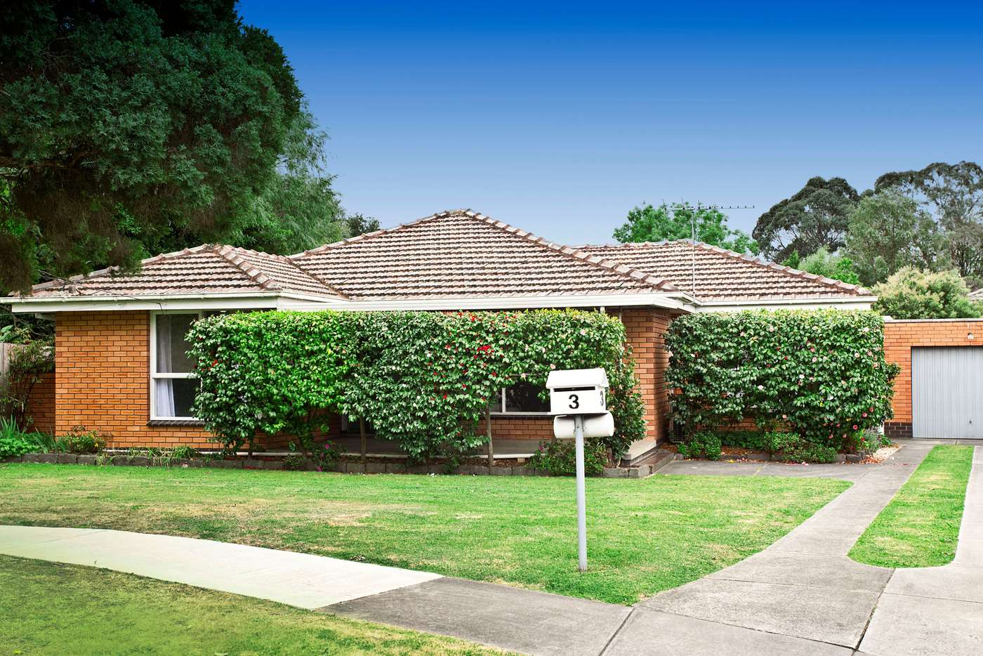 Main view of Homely house listing, 3 Gerrard Court, Glen Waverley VIC 3150