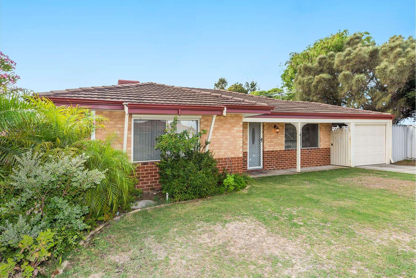 Main view of Homely house listing, 31 Fairview Drive, Waikiki WA 6169
