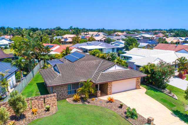 42 Fernleigh Crescent, Mountain Creek QLD 4557