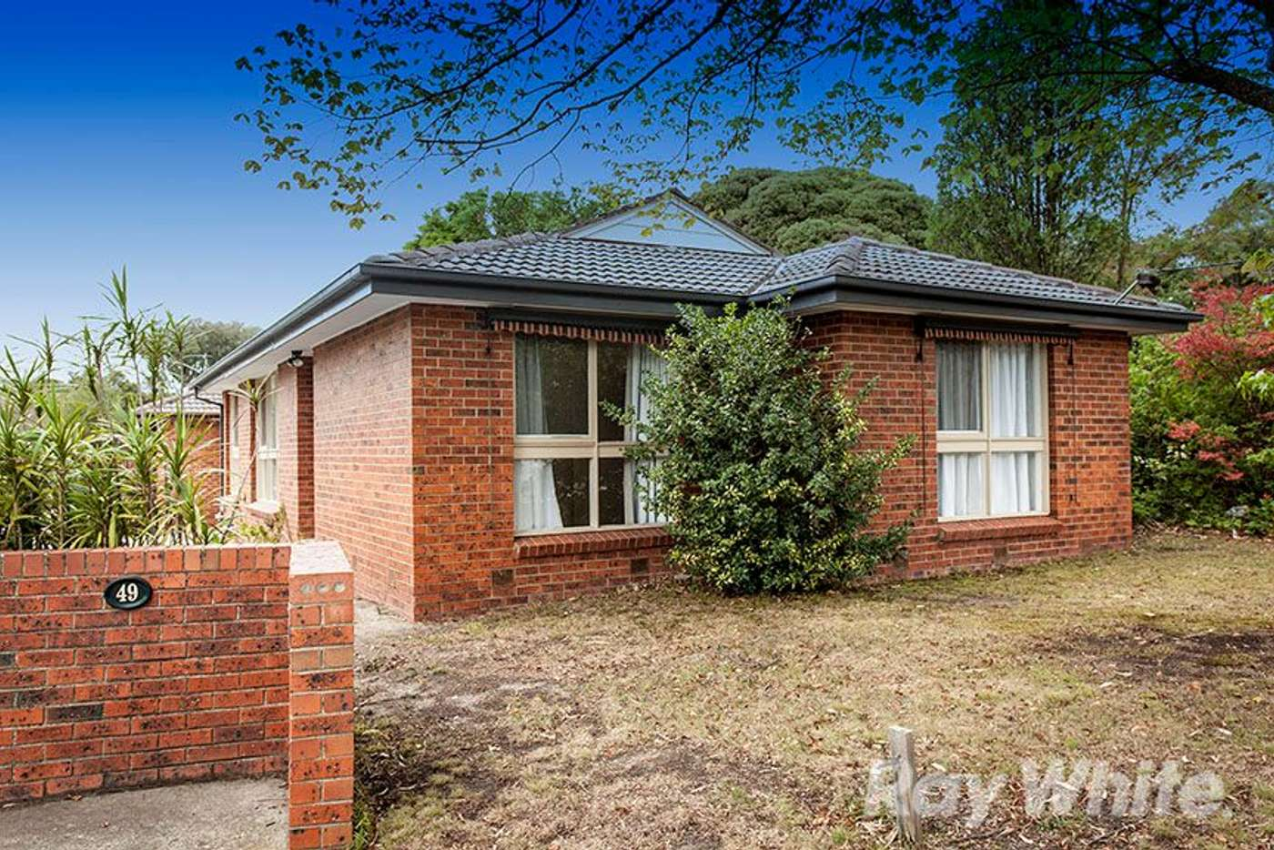 Main view of Homely unit listing, 1/49 McCulloch Street, Nunawading VIC 3131