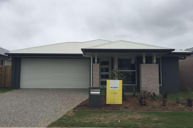 181 Morris Road, Rothwell QLD 4022