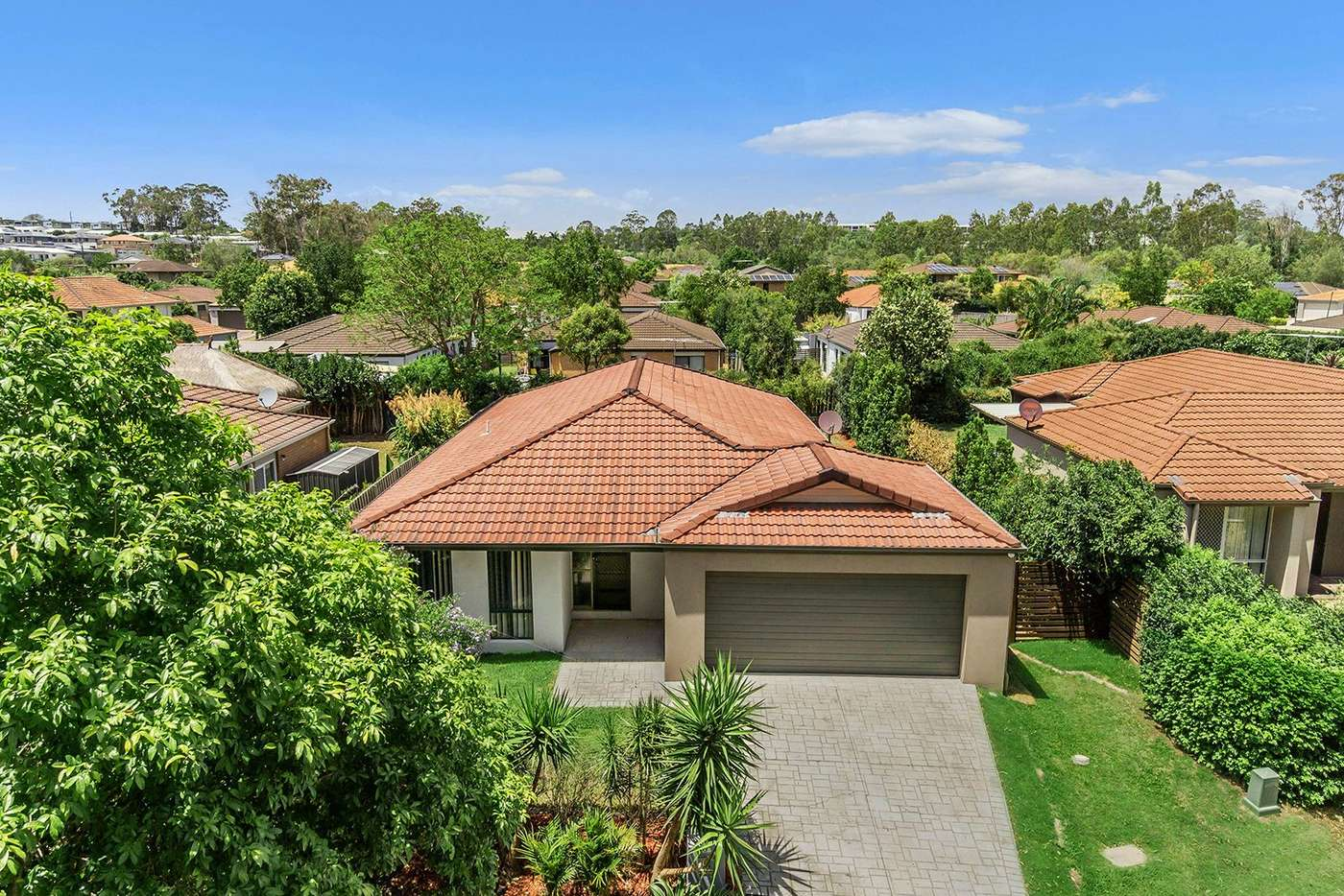 Main view of Homely house listing, 49 Macaranga Crescent, Carseldine QLD 4034