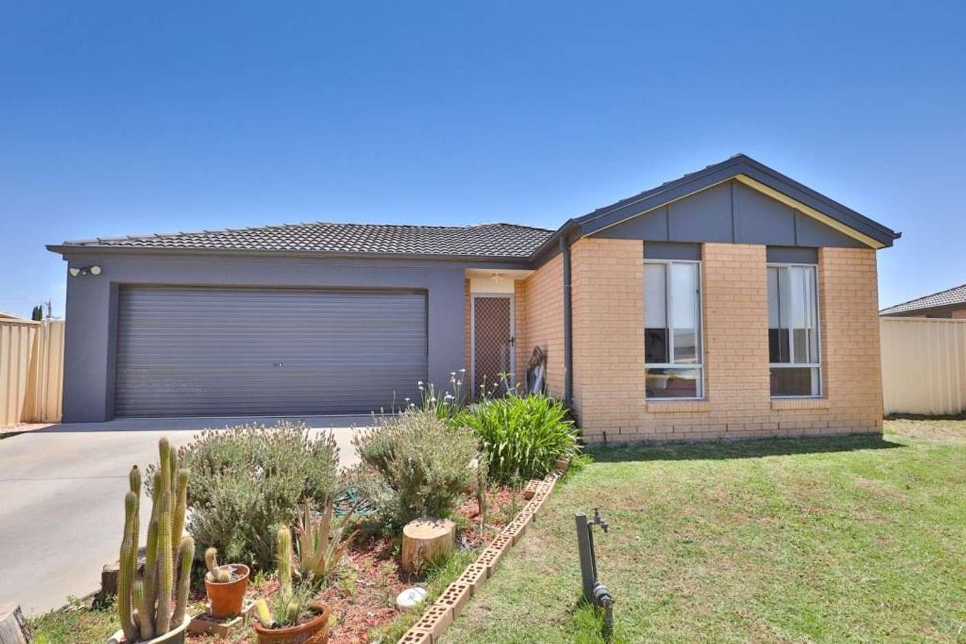 Main view of Homely house listing, 12 Reisling Court, Mildura VIC 3500