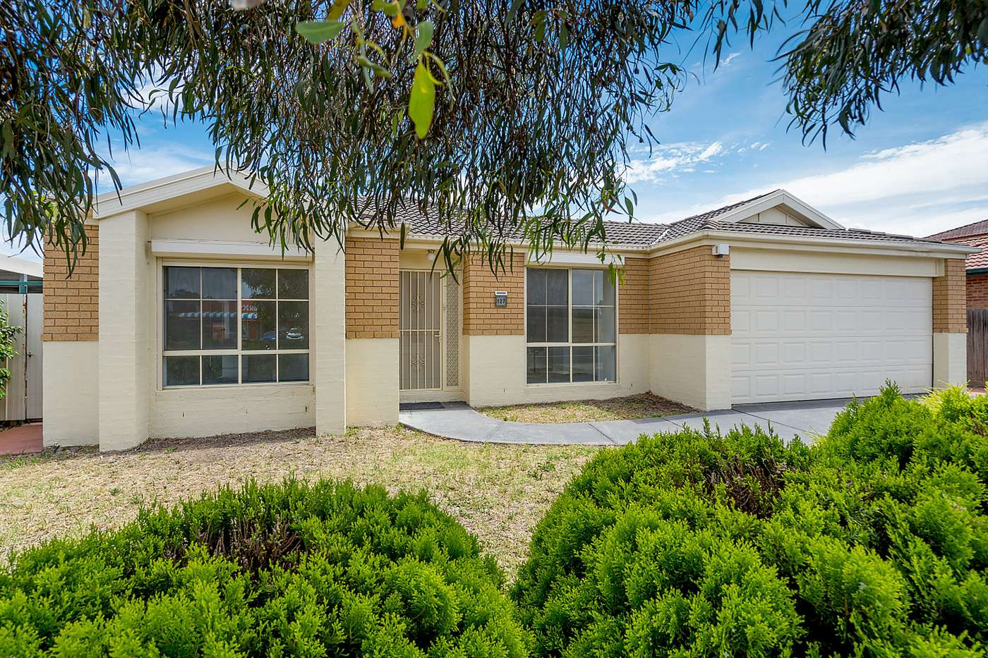 Main view of Homely house listing, 127 Hothlyn Drive, Craigieburn, VIC 3064