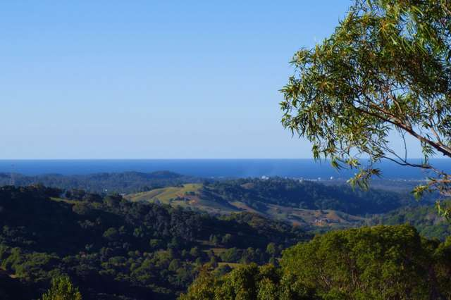 429 Carool Road, Carool NSW 2486