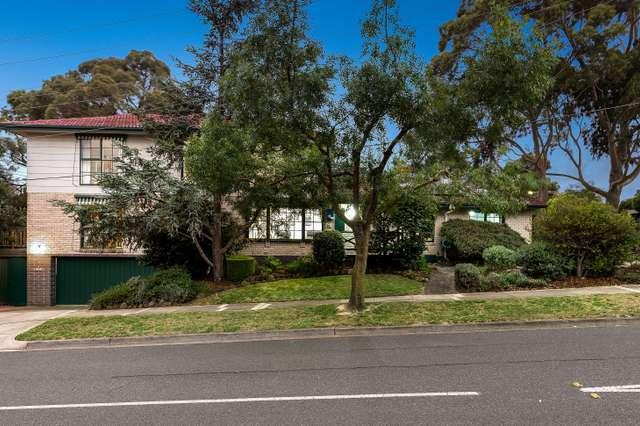 19 Sampson Drive, Mount Waverley VIC 3149