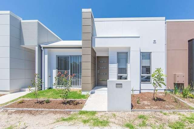 129 Macquarie Circuit, Fitzgibbon QLD 4018