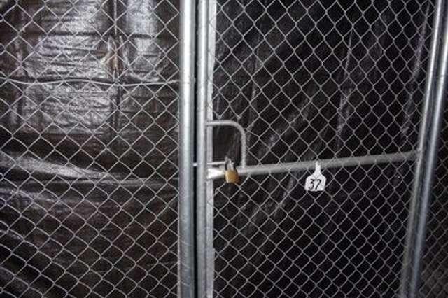 Storage Cage 40 Macleay Street, Potts Point NSW 2011
