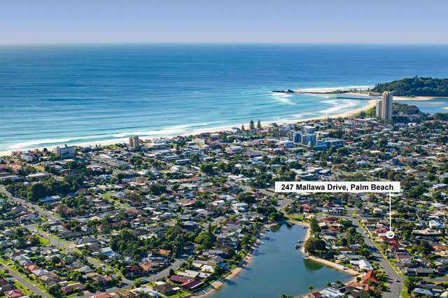 247 Mallawa Drive, Palm Beach QLD 4221