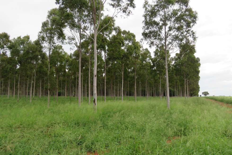 Fifth view of Homely ruralOther listing, Lot 23 & 24 Proston Boondooma Road, Brigooda, Proston QLD 4613