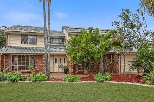23 Alphitonia Crescent, Sunnybank Hills QLD 4109