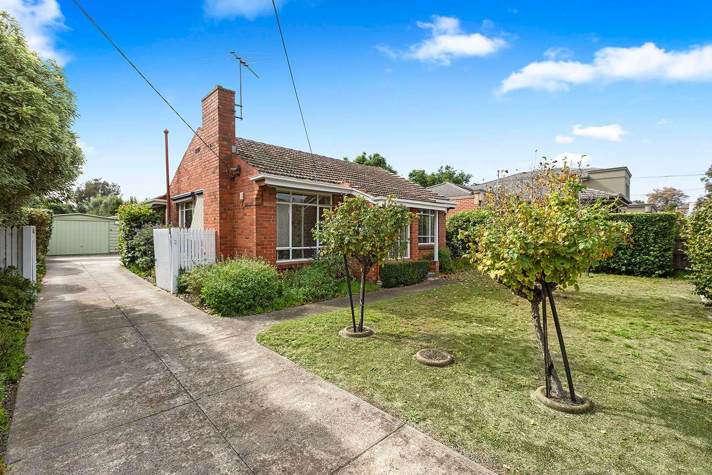 Main view of Homely house listing, 49 Apex Avenue, Hampton East VIC 3188