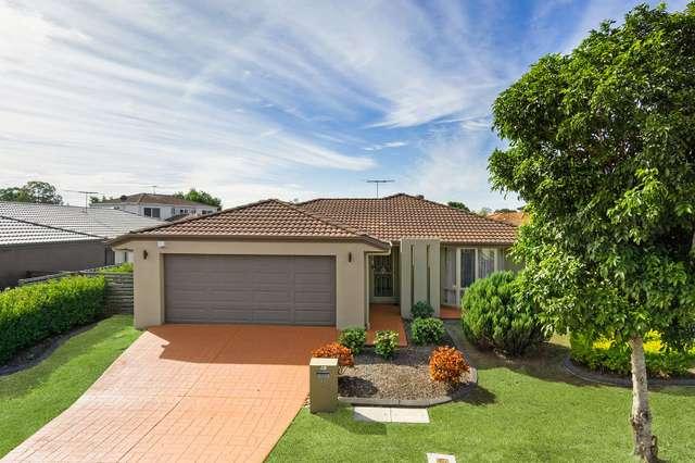 17 Macaranga Crescent, Carseldine QLD 4034