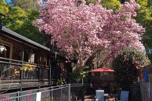37 Watson Street, Bellingen NSW 2454