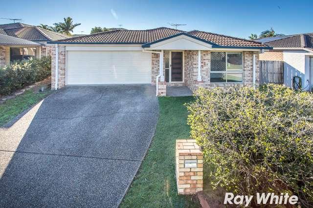 6 Jardine Street, Murrumba Downs QLD 4503