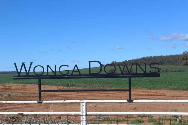 """ Wonga Downs"", Bellata NSW 2397"