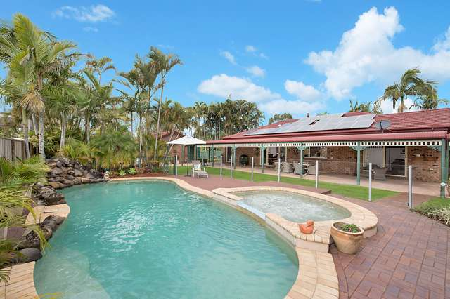 1 Bottlebrush Place, Little Mountain QLD 4551