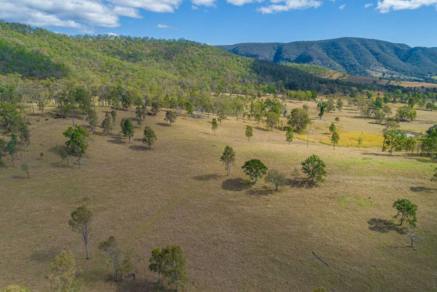 Sixth view of Homely house listing, 52 Vidoni Road, Neurum QLD 4514