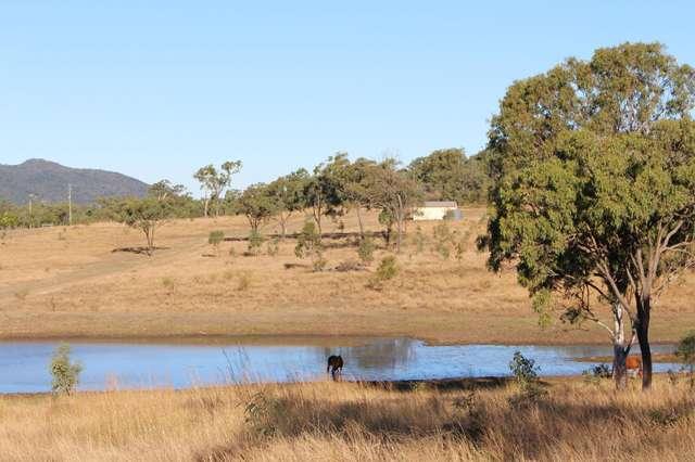 589 The Narrows Road, Mount Larcom QLD 4695