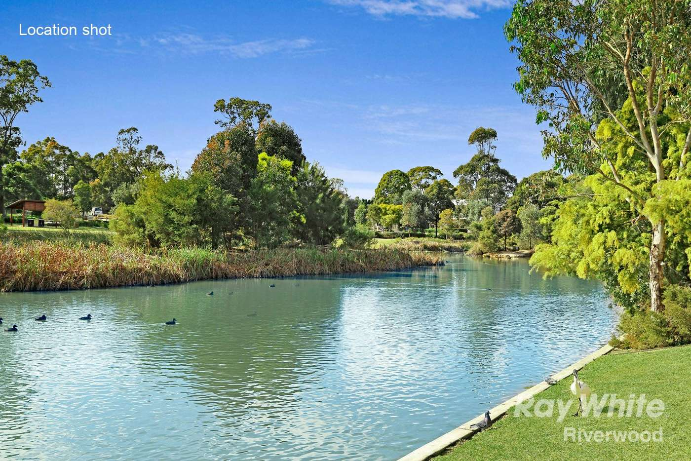 Sixth view of Homely apartment listing, 313/7 Washington Avenue, Riverwood NSW 2210